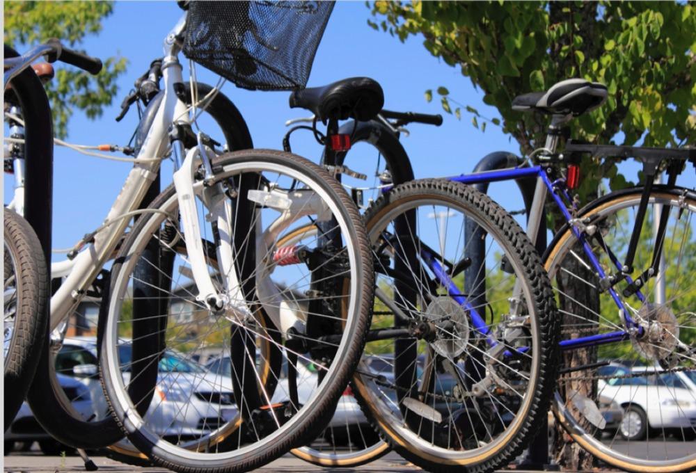 להגיע ללימודים באופניים